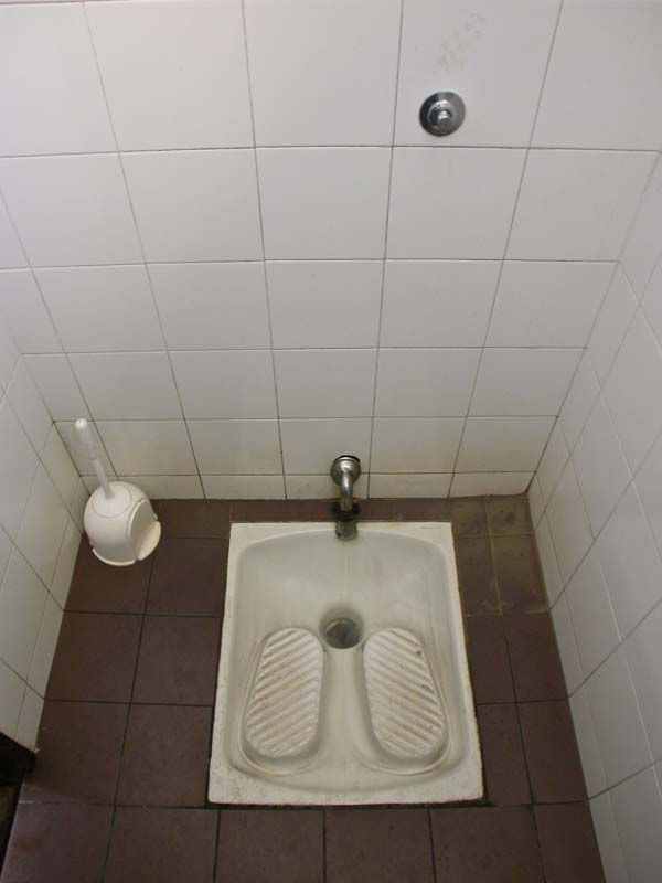 An Austrian/German Toilet