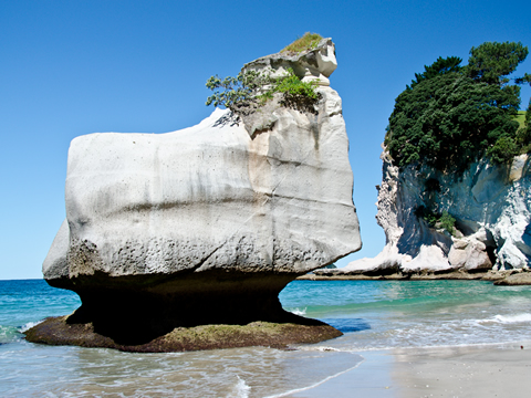 Kayak Cathedral Cove New Zealand